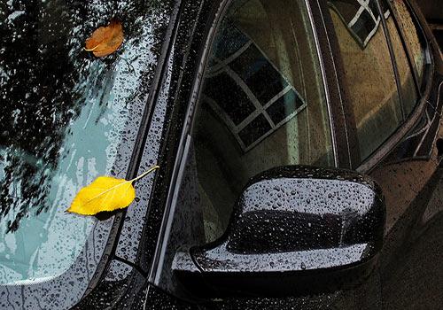 باران پاییزی،autumn rain